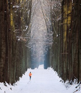 running in a forest in the snow