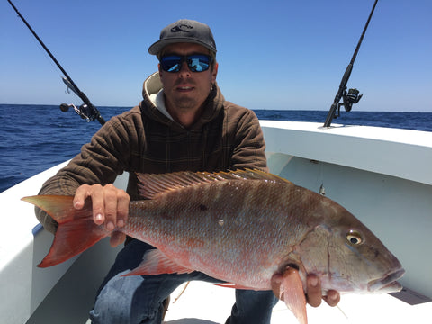 Mutton Snapper on artificial