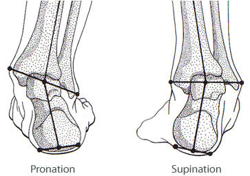 Pronation and supination - the correct fit and correct model of Meindl boot can correct this problem