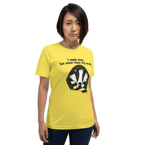 I seem nice but never incur my wrath - Hogwarts Harry Potter Hufflepuff shirt, premium quality