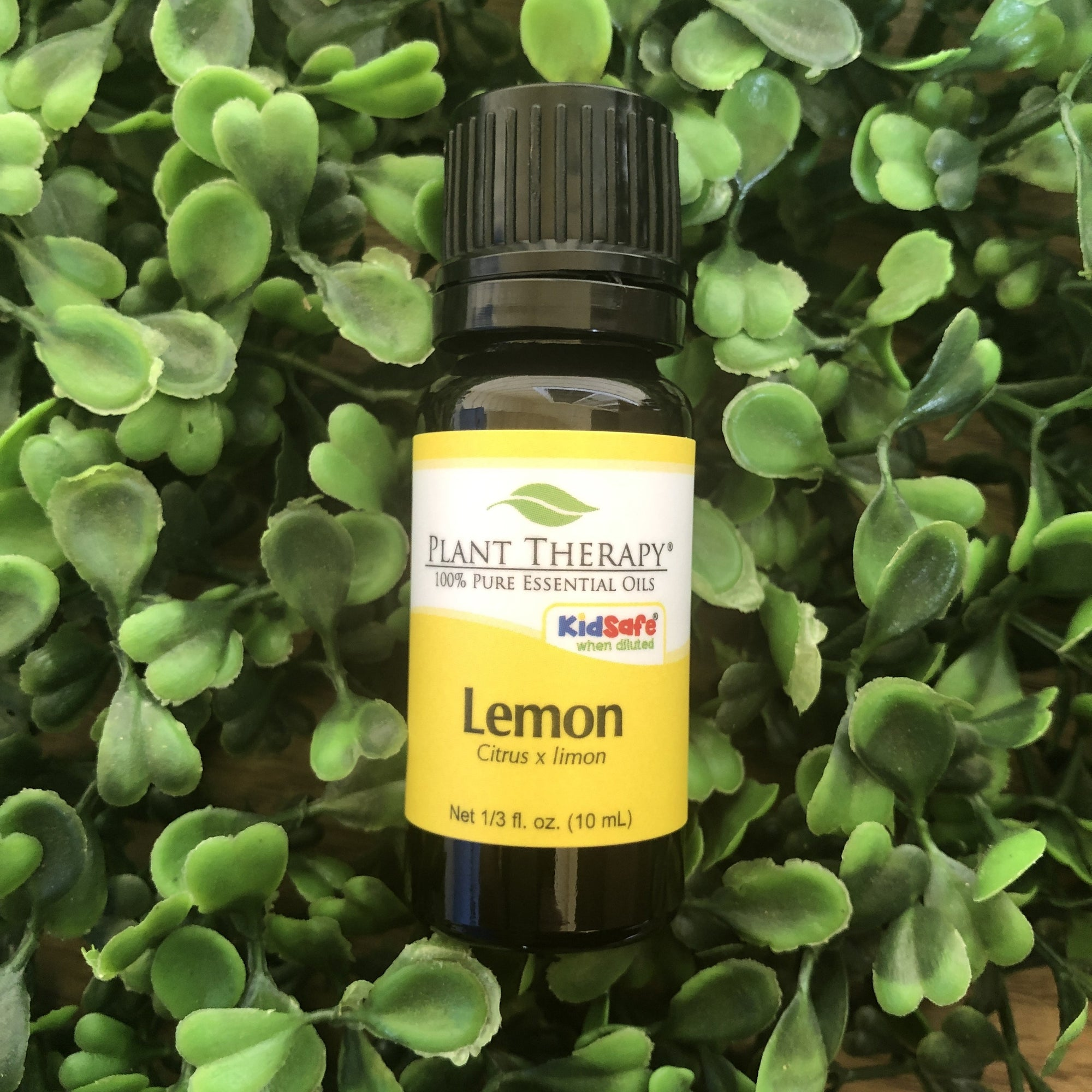 Lemon Steam Distilled Essential Oil - Essential Oil