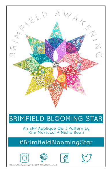 Brimfield Blooming Star Pattern