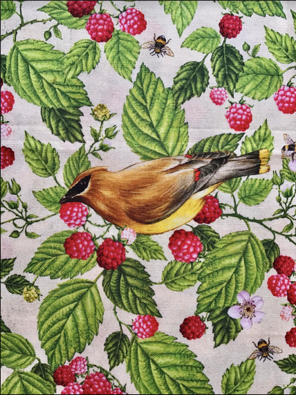 Birds and Berries of Maine Cedar Waxwing and Raspberry