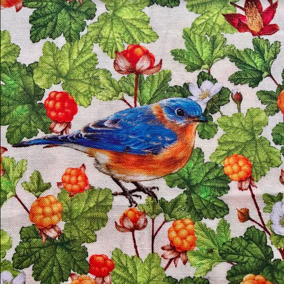 Birds and Berries of Maine Eastern Bluebird and Cloudberry