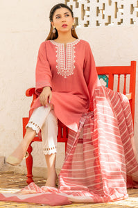 Stitched 2 Piece Embroidered Cotton Slub & Yarn Dyed Suit