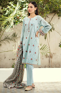 Stitched 2 Piece Embroidered Lawn Shirt
