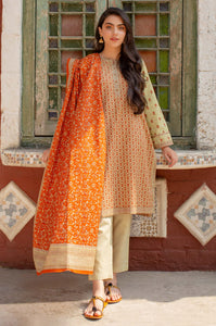 Stitched 2 Piece Printed Khaddar Suit