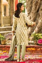 Load image into Gallery viewer, Stitched 3 Piece Printed Slub Lawn Suit