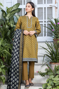 Stitched 3 Piece Printed Karandi Suit