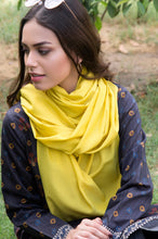 Load image into Gallery viewer, Silky Lace Trimmed Scarf