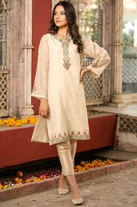 Stitched 1 Piece Khaddi Net Embroidered Shirt