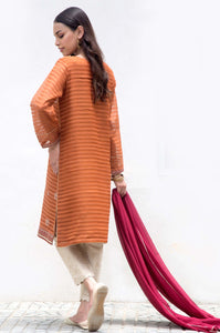 Stitched 2 Piece Stripe Karandi Embroidered Suit
