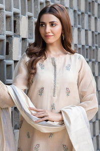 Stitched 2 Piece Karandi Net Embroidered Suit