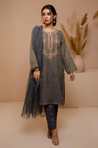 Stitched 2 Piece Zari Khaddi Net Embroidered Suit
