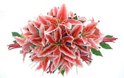 Pink Silk Stargazer Lily Top Table Wedding Arrangement