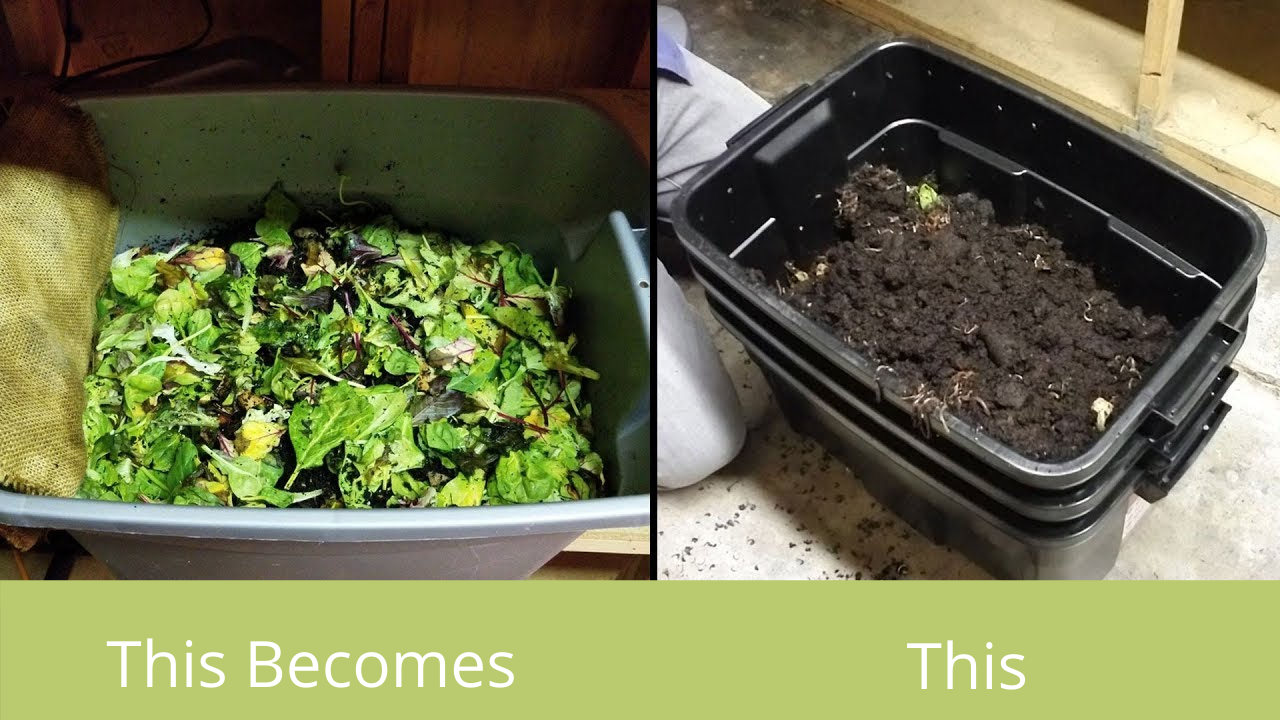 DIY Worm Bins, easy and inexpensive. Start Your Vermicomposting Adventure Today!