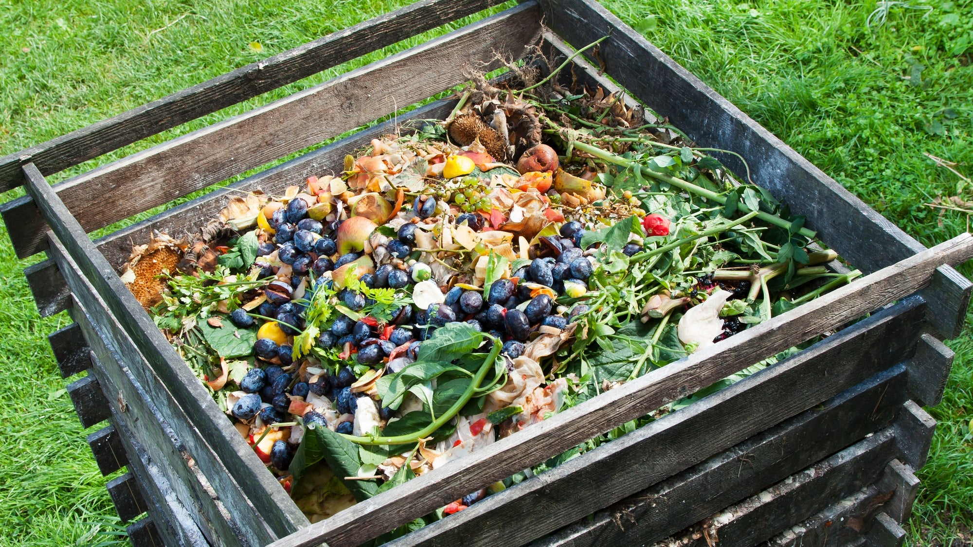 Composting Helps Your Soil & Your Soul