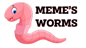 Memes Worms