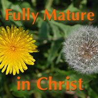 Fully mature in christ