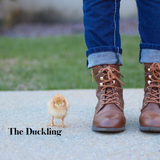 The Duckling $25/month