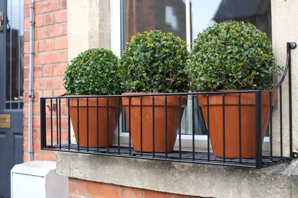 Classic Window Boxes from £89.00