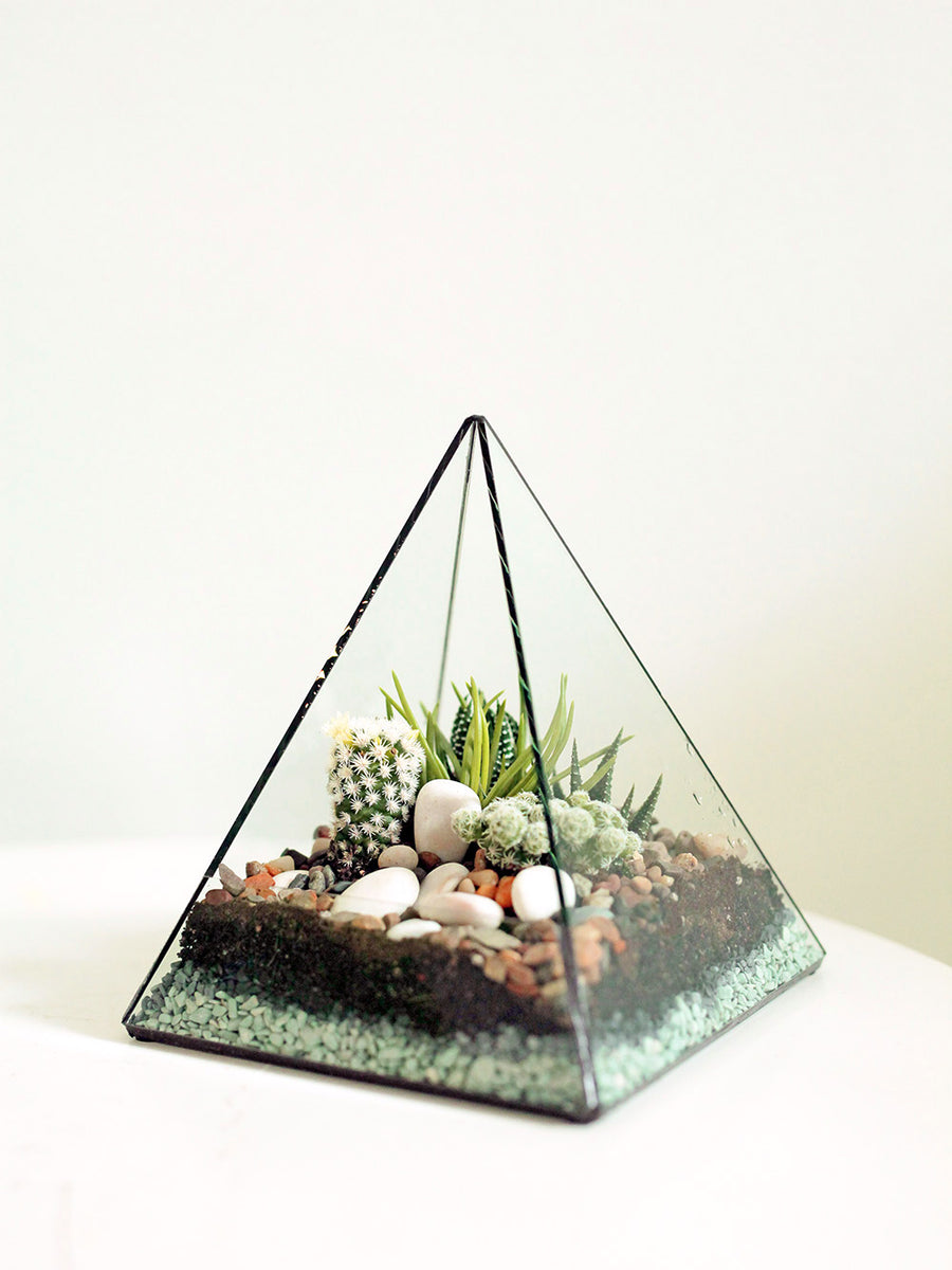 Medium Pyramid Terrarium