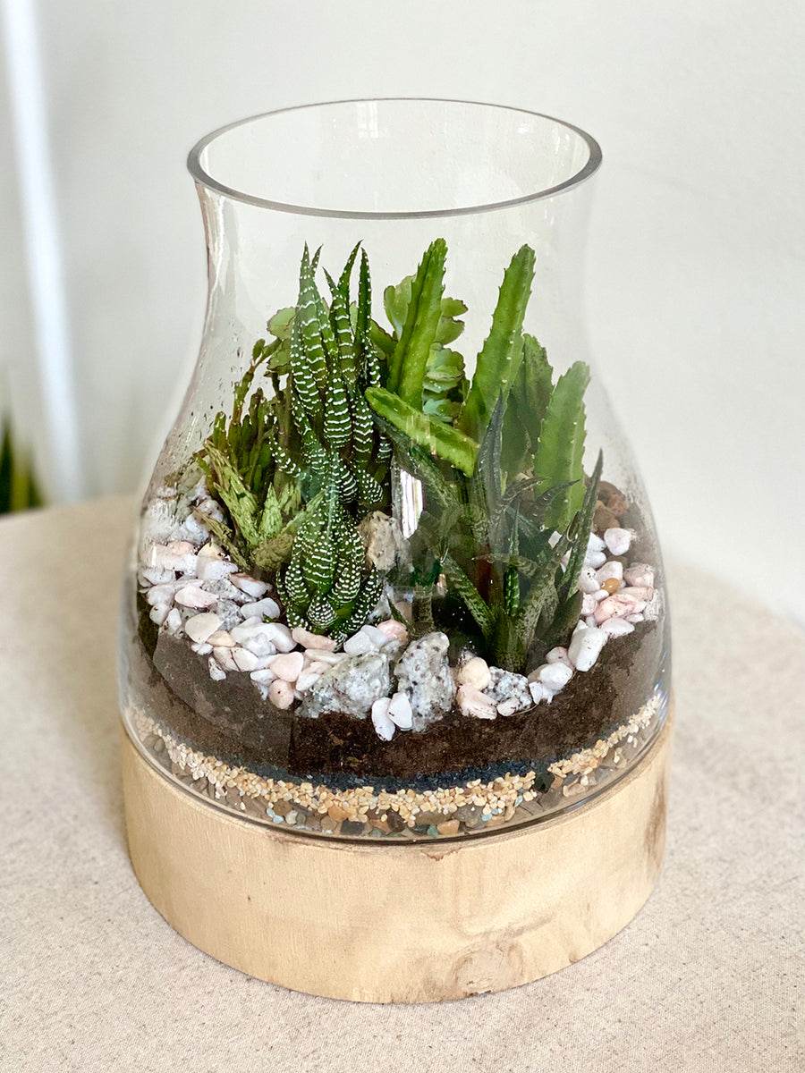 Bell Jar Terrarium On Wooden Stand