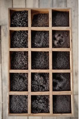 Darvaza Teas   Compartimented Wooden Box with Loose Black Tea
