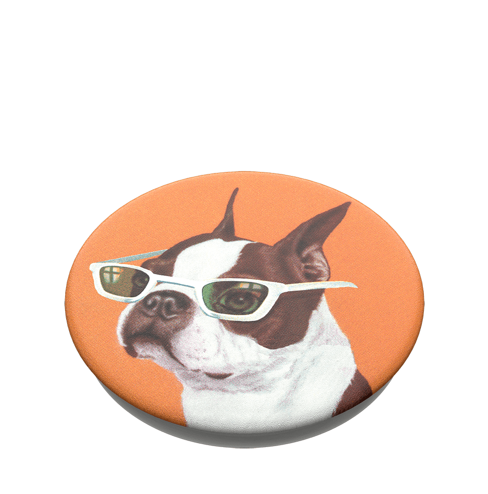 PopSockets PopTop Ginger