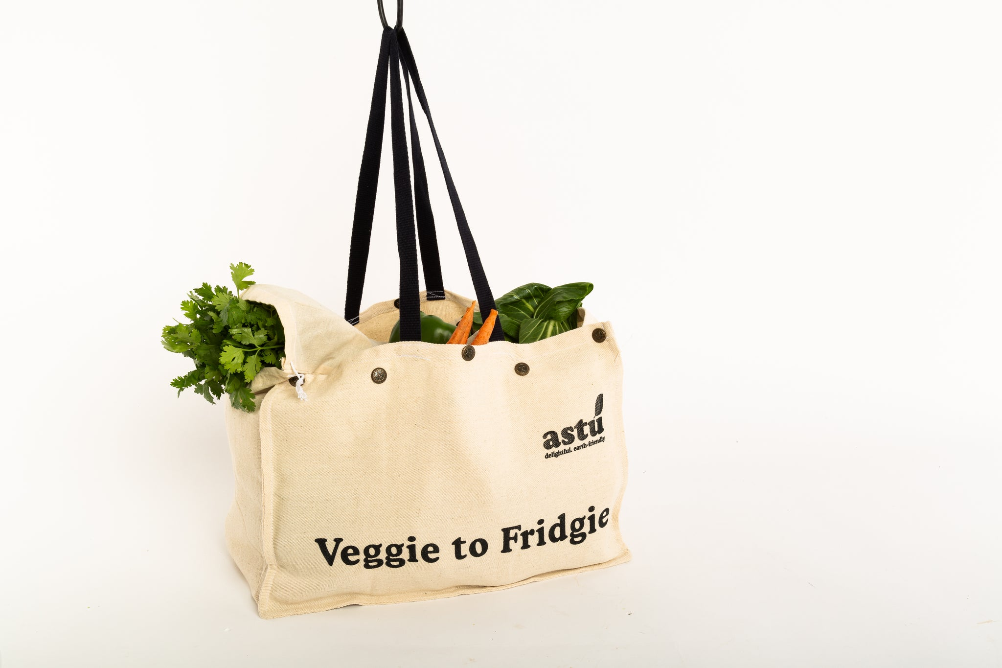 Veggie to Fridge - Grocery bag with pouches