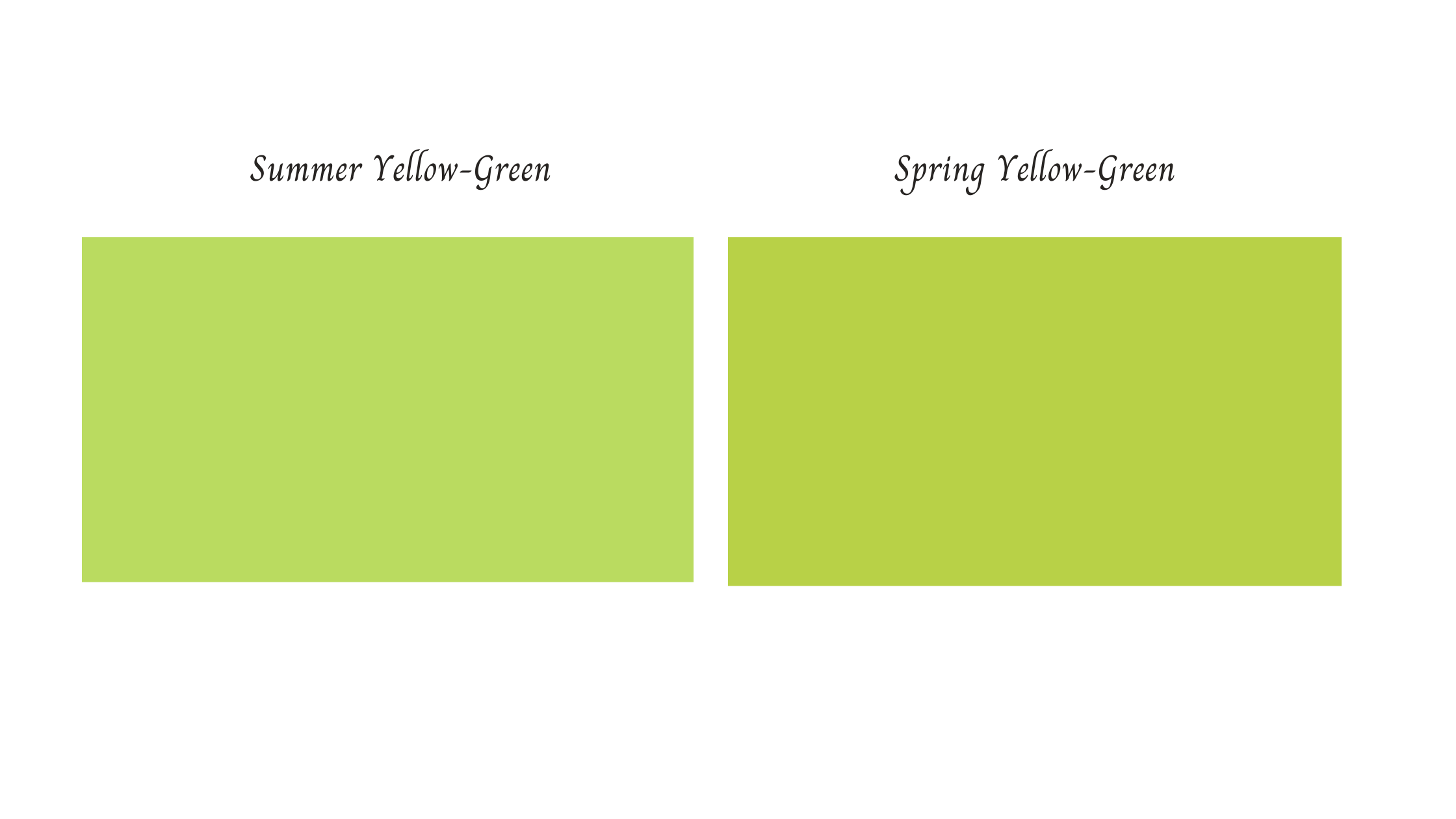 Summer vs Spring Yellow-Green