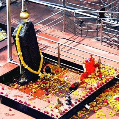 Shani Dev Puja and Tailabhishekam