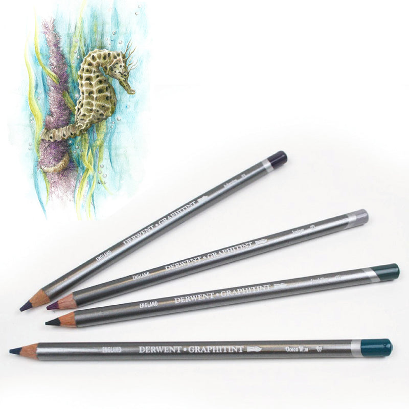 Derwent Derwent Graphitint Watercolour Graphite Pencils Set