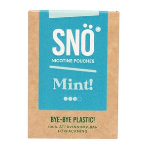 SNÖ - Mint - Nic Pouch UK