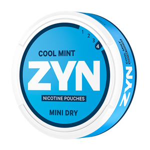 ZYN - Cool Mint No.4 (Mini dry)