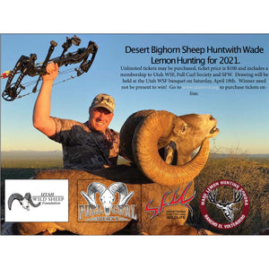 Desert Bighorn Sheep Draw Hunt