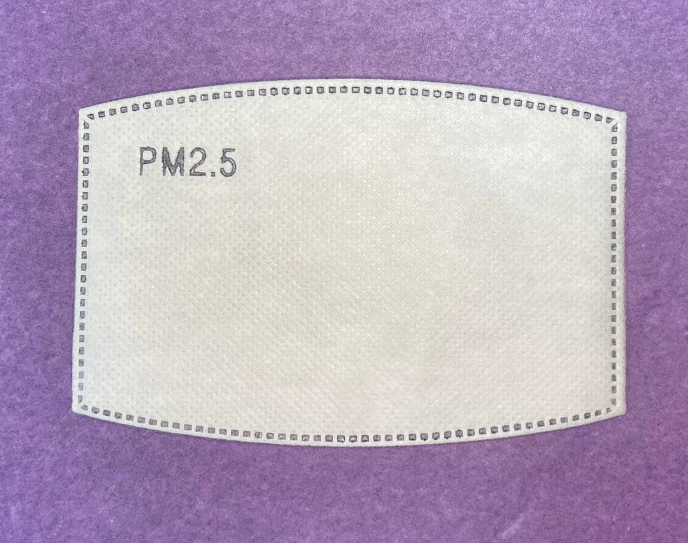 Face Mask - PM2.5 Activated Carbon Filters - Pack of Two
