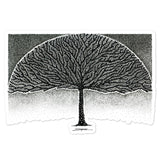 Spherarborima - Laptop Sticker - MJS.ART