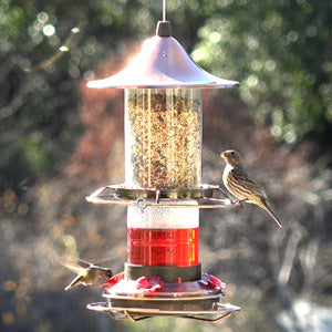 2-in-1 Hummingbird & Bird Seed Feeder