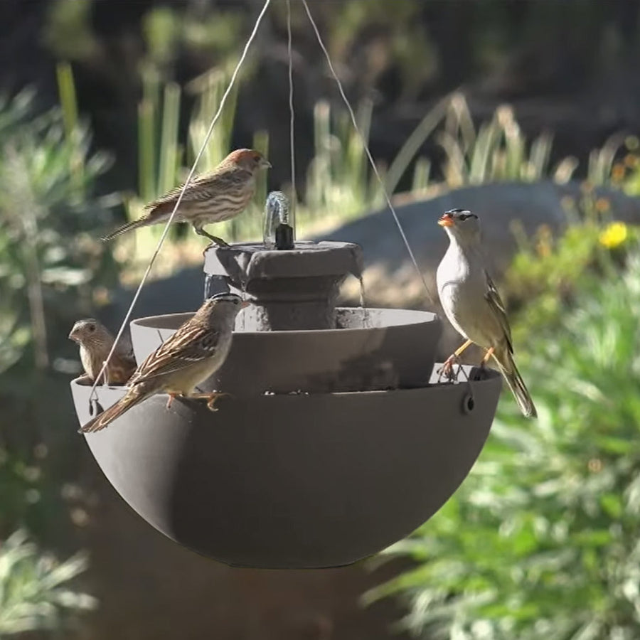 2-in-1 Maria Bird Feeder with Fountain