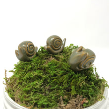 Load image into Gallery viewer, Miniature Snail: Army Green
