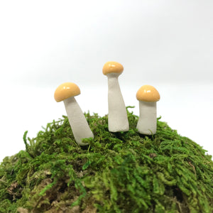 Miniature Mushroom: Butter Yellow