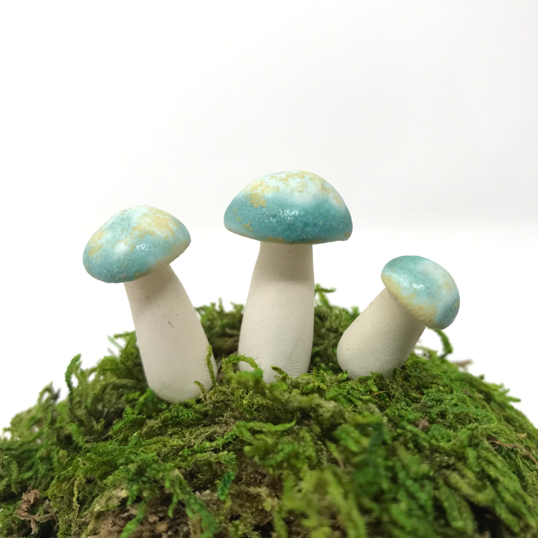 Miniature Mushroom: California Dreaming Crystalline