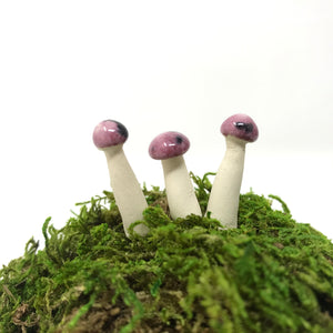 Miniature Mushroom: Cranberry Frost with Sprinkles