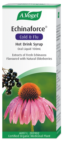 Echinaforce Cold & Flu Hot Drink Syrup 100ml
