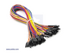 "Premium Jumper Wire 50-Piece Rainbow Assortment F-F 30cm (12"")"
