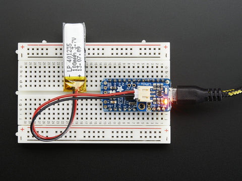 Adafruit Pro-Trinket Lilon/Lipoly-Backpack