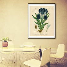 Load image into Gallery viewer, Purple Iris Botanical Illustration Print Framed Hanging In A Conference Room