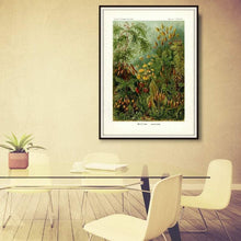 Load image into Gallery viewer, Ernst Haeckel Forest Moss Plate 72 Print Hanging In A Conference Room