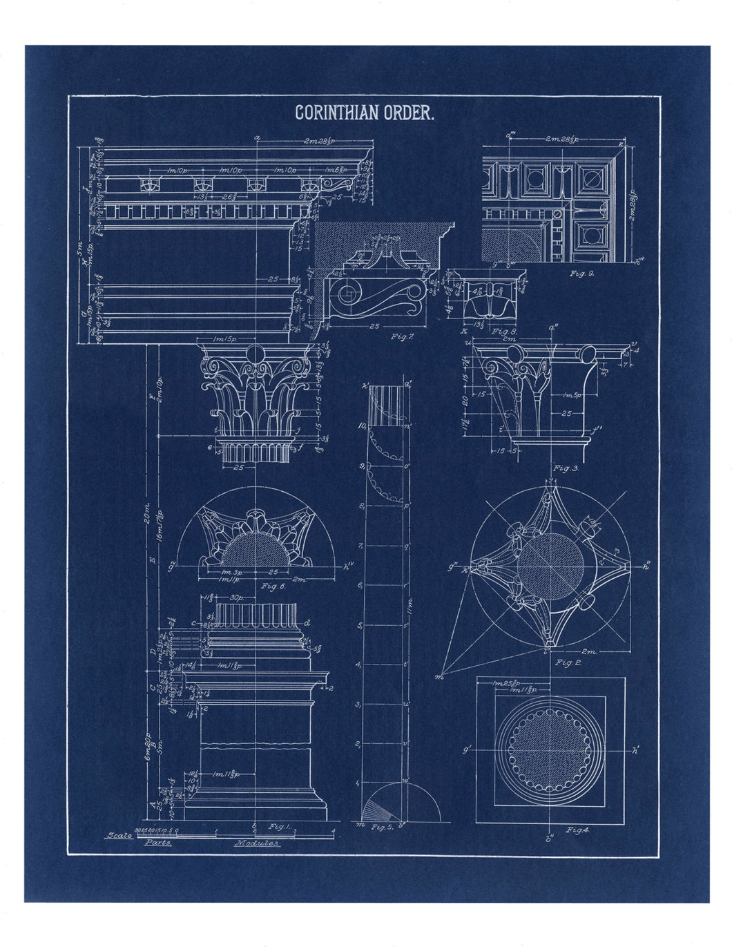 Corinthian Column Blueprint Architectural Drawing